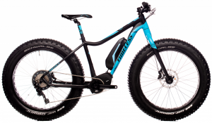 DEMO: Timeless E-Fatbike 2020